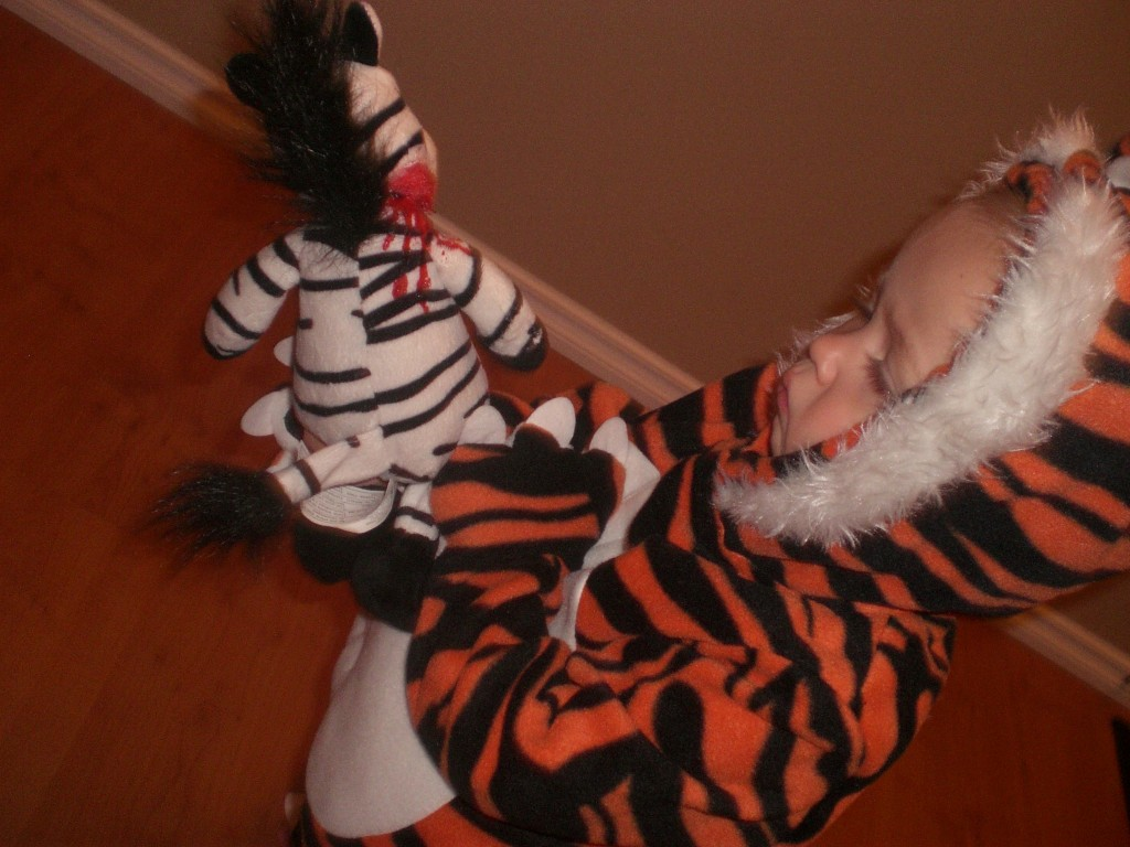 The HELL DID YOU DO TO MY ZEBRA, MOM?!?